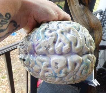Brain 1c